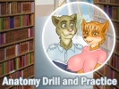 Anatomy Drill and Practice